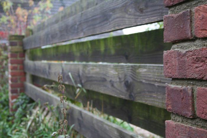 Gartenzaun Douglasie Ziegel